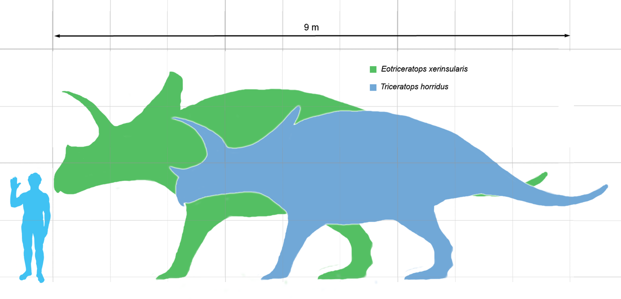 1280px-Eotriceratops_scale
