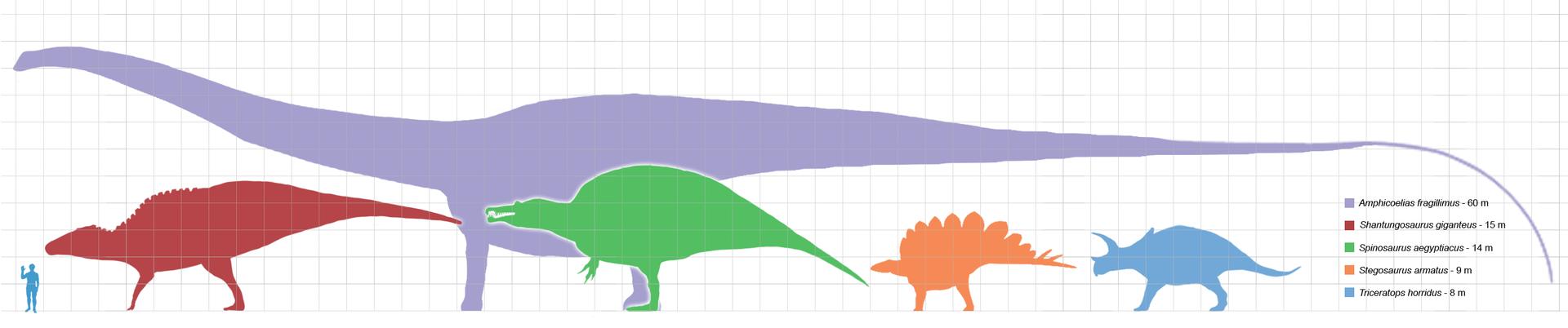 Largestdinosaursbysuborder_scale