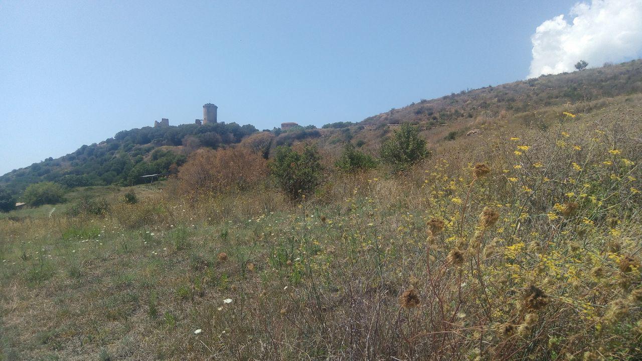 Sul Parco Archeologico di Elea-Velia